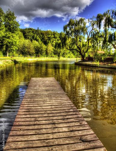 Fotobehang Bleke violet Forest lake