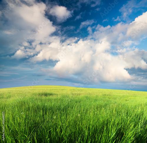 Fotobehang Zwavel geel Green field in the mountain valley. Beautiful summer landscape