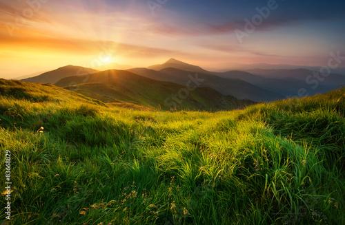 Fotografie, Obraz Mountain valley during sunrise. Natural summer landscape