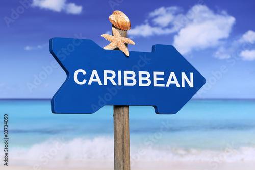 Foto op Plexiglas Caraïben Caribbean sea with beach in summer on vacation