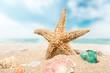 Travel, caribbean, beach.