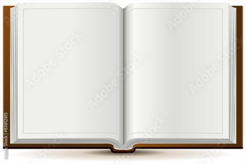 Fotografie, Obraz  An open book in hardcover