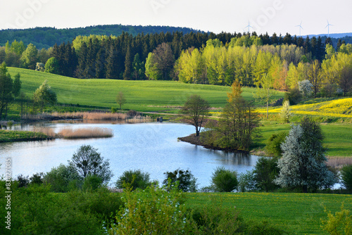 Foto op Canvas Pistache Spring landscape with lake
