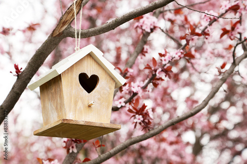 Tableau sur Toile Nesting box hanging on the tree