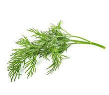 Dill Isolated On White Backgro...