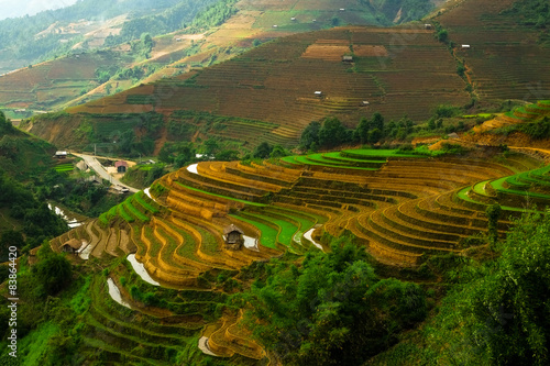 Fotobehang Rijstvelden Rice fields on terraced of Mu Cang Chai, YenBai, Vietnam