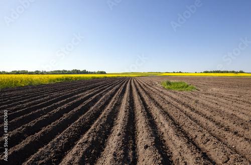 Photo plowed field