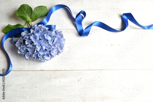 Foto op Canvas Hydrangea Blue hydrangea with ribbon