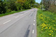 Blossom Roadside