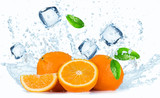 Fototapeta Panels - Oranges with water splash