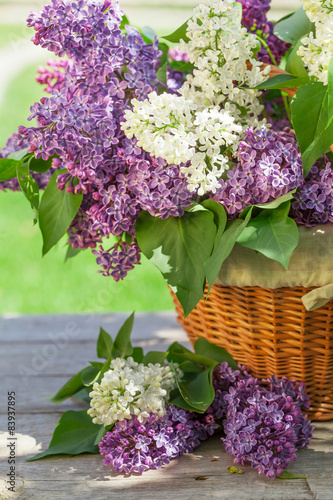 Fotobehang Lilac Colorful lilac flowers in basket