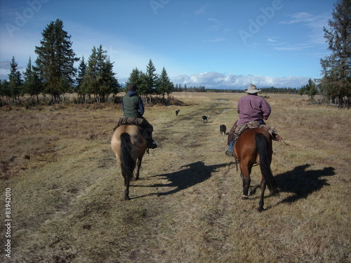 Fotografie, Obraz  two cowgirls heading out to gather strays