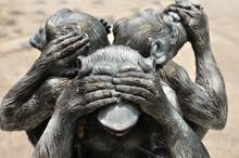 Three Wise Monkeys Or Three My...