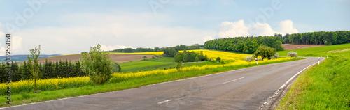 Fotografie, Obraz Landstraße durch Rapsfelder im Saarland