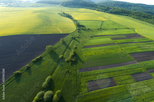 Poster Luchtfoto Aerial view on yellow fields