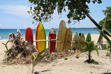 Surfboards Am Karibikstrand Von Costa Rica
