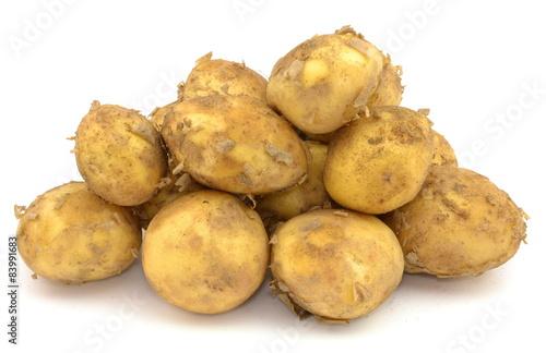 Obraz młode ziemniaki - fototapety do salonu