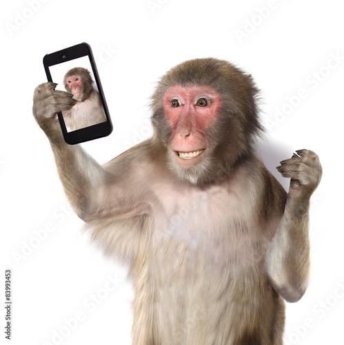 Foto op Plexiglas Aap Funny monkey taking a selfie and smiling at camera