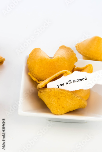 Photo  open fortune cookie - YOU WILL SUCCEED