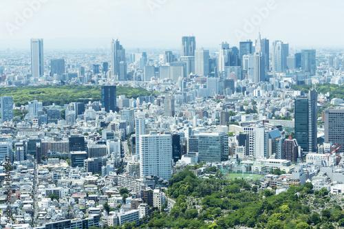 Foto op Aluminium Tokyo 新宿高層ビル群と街並