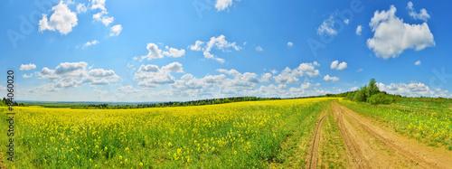 Foto auf Gartenposter Landschappen Country road and a flower field