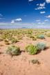 Wüstenlandschaft Dürre