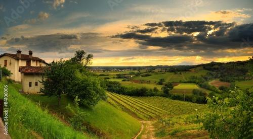 Colli orientali del Friuli Italia