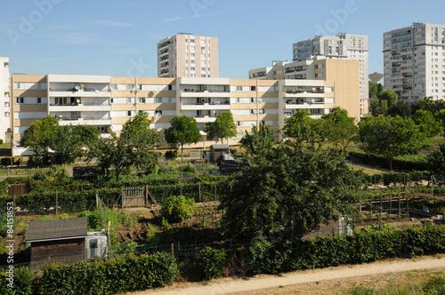 France, allotment garden in Les Mureaux Canvas Print