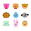 animal cute faces,dog pig lion cat bird monkey rabbit