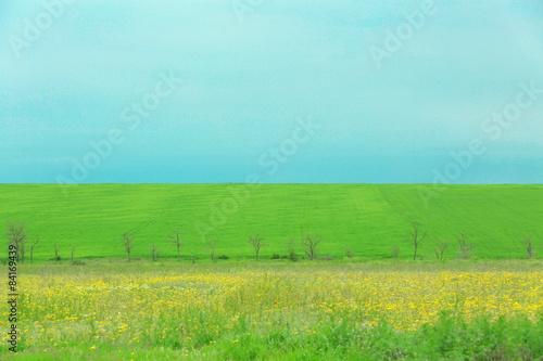 In de dag Groene koraal Green spring field
