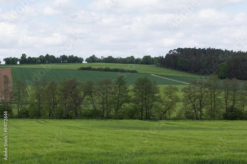 Fototapeta Spring landscape in Bavaria obraz na płótnie