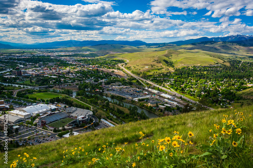 Flowers and view of Missoula from Mount Sentinel, in Missoula, M