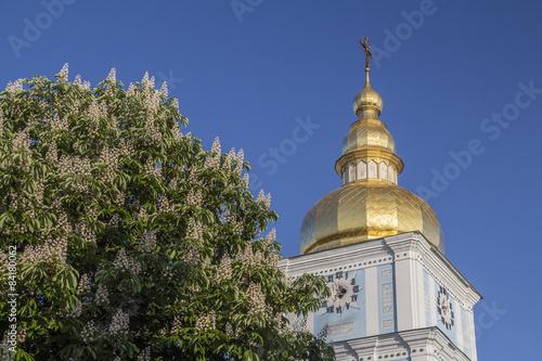 Foto op Plexiglas Kiev Early summer morning in Kiev