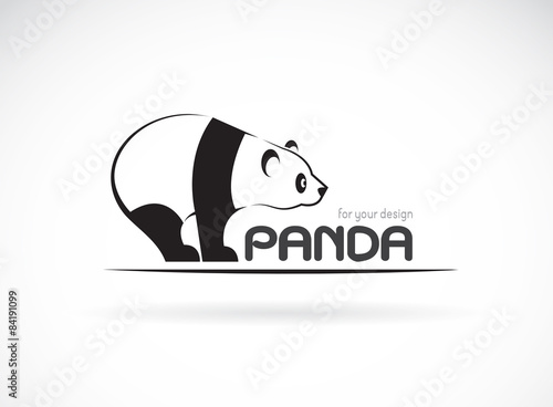 Fényképezés  Vector image of an panda design on a white background