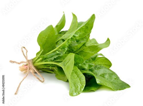 Staande foto Groenten Spinach bunch with a rope.