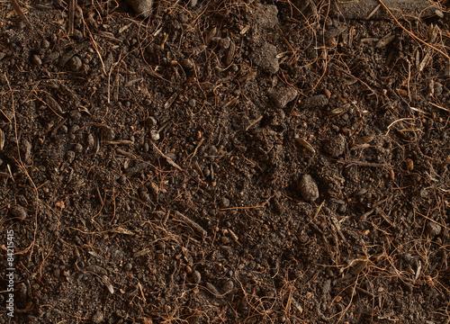 фотография  Peat soil texture background