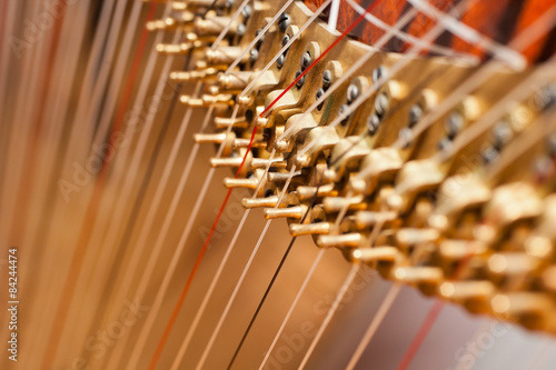 Fragment pins Harp Fototapet