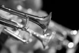 Trąbka rozpada się w orkiestry zbliżeniu w czarny i biały - 84244817