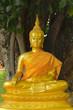 Meditation and peace of Buddha.