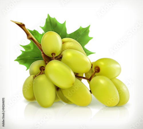 Bunch of grapes, vector icon Fototapete
