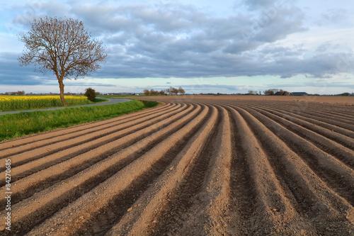 Papiers peints Sauvage plowed field on farmland