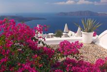 Greek Vacations