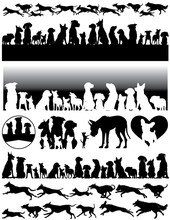 Editable Vector Silhouette Of Dogs Running Or Standing