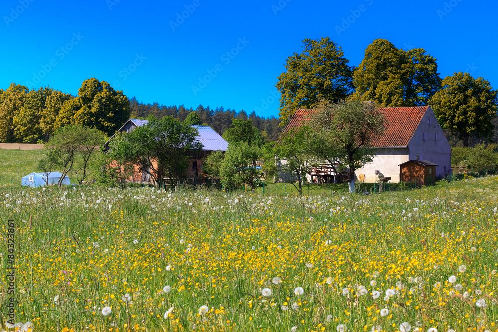 Obraz Wiosenna Wieś  fototapeta, plakat