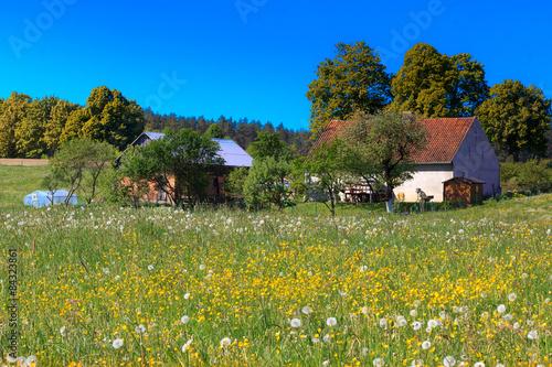 Foto  Wiosenna Wieś