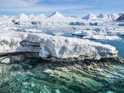 Fotografia, Obraz  Arctic glacier landscape - Svalbard