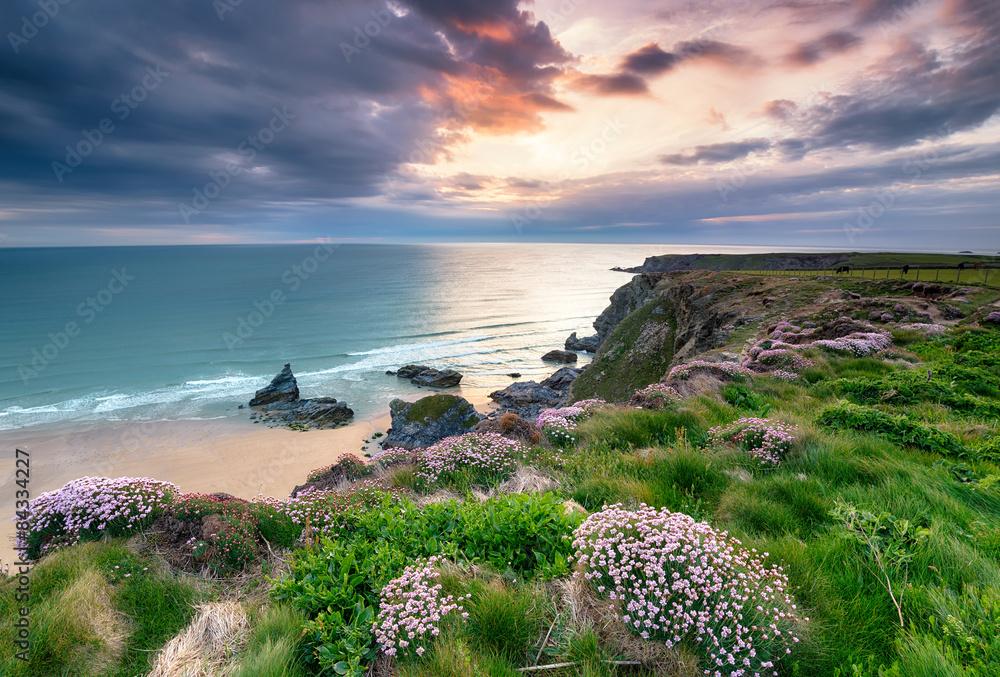 Fototapety, obrazy: Setting Sun on the Cornwall Coast
