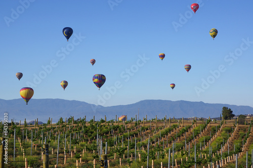 Photo  Balloon and Wine Festival in Temecula, California