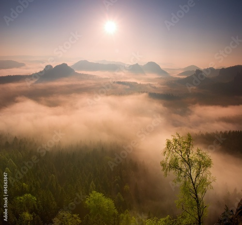Wall Murals Cappuccino Fogy red daybreak. Misty beautiful hills and peaks in Sun rays