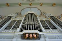 Der Orgelprospekt Der Haerpfer-Orgel In St. Maurice In Freyming